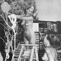 Nudists Camp Crowd 58